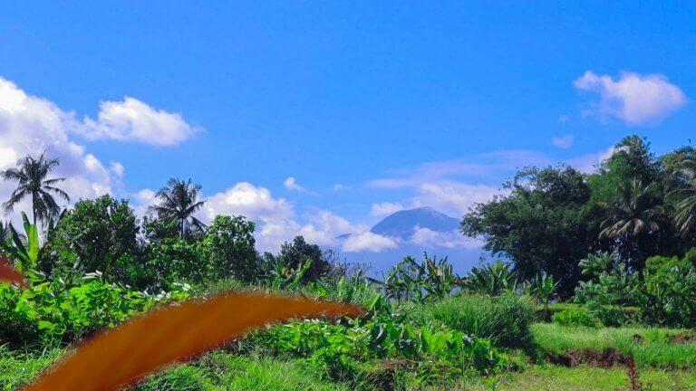 ciampea highland view